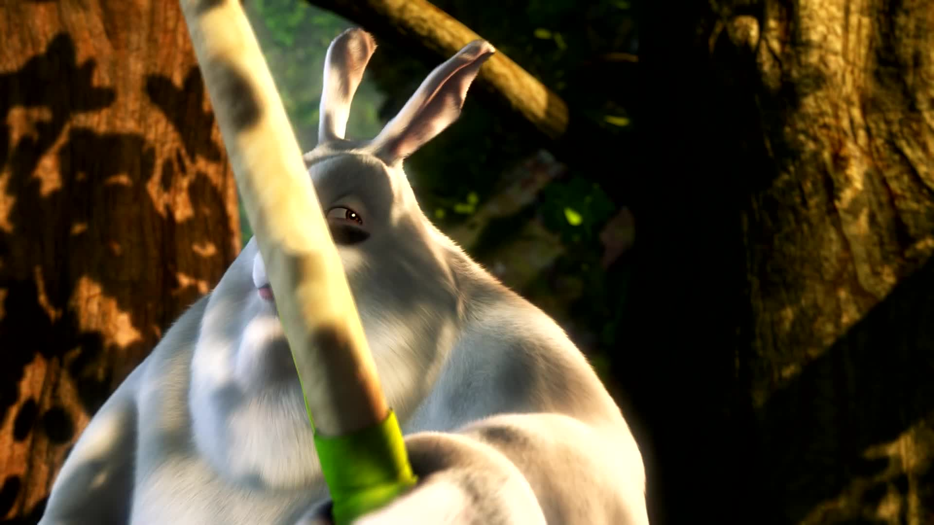 Big Buck Bunny (1080p HD)-huVVKz8P3vU